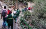 اجرای طرح پاکسازی جنگل کارا