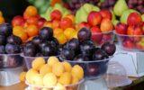 تغذیه مناسب در روزهای گرم سال