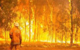 آتش سوزی در منطقه حفاظت شده رود رونه باشت کهگیلویه و بویر احمد